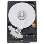 Cietais disks SEAGATE 1TB 7200RPM 6GB/S 64MB